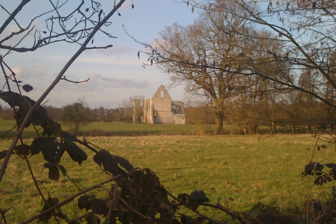 Newark Priory near Pyrford