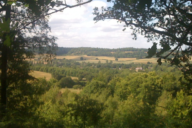 The North Downs from Chinthurst Hill
