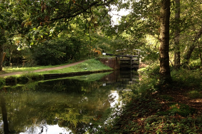 Maintenance trip by the Basingstoke Canal